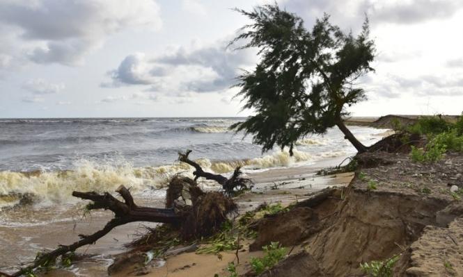 ضحايا التغير المناخي... كيف بعثر ترامب الأوراق؟