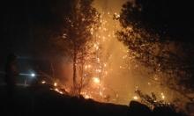 إخلاء منازل مأهولة إثر حريق هائل قرب يركا