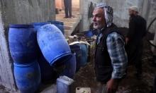 """رغم القصف والحصار... """"مدينة الزيتون"""" السورية تقطف ثماره"""