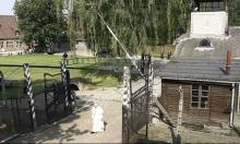 ألمانيا: السجن الفعلي لمسنة أنكرت المحرقة