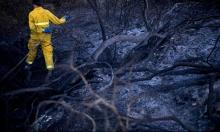 موجة الحرائق مستمرة: عمليات إخلاء واحتراق منازل