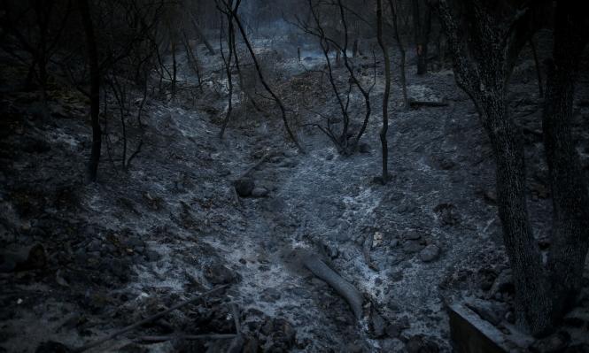 إذا واجهتك النيران: كيف تتعامل مع الحريق؟