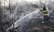 ألفان من طواقم الإطفاء أخمدوا 1773 حريقا