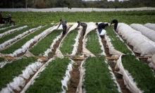 نتنياهو يطلق العنان لألمانيا بمشاريع بغزة والضفة