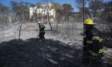 """سلطة الإطفاء تبحث عن سيناريو لـ""""إرهاب الحرائق"""""""