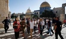 عشرات المستوطنين يقتحمون الأقصى والحراس يمنعون صلوات تلمودية