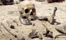 اكتشاف مقبرة جماعية تحت مركز شرطة في فرنسا!