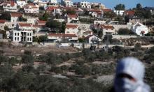 مشروع قرار فلسطيني بمجلس الأمن لوقف الاستيطان