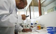 تعطيل هرمون في البعوض يحد من انتشار الملاريا