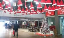 حاخام التخنيون للطلاب اليهود: لا تقتربوا من شجرة الميلاد