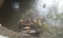 سقوط مركبة عائلة من دير الأسد في نهر الأردن