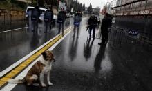 هجوم اسطنبول... من الواقع إلى الواقع الافتراضي