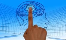 علماء يحددون مناطق الوعي في دماغ الإنسان!