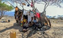82% من اليمنيين بحاجة لمساعدات إنسانية
