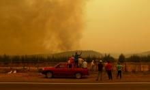 الحرائق في تشيلي تأتي على 130 ألف هكتار
