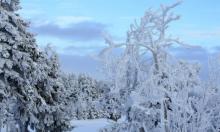 علماء روس: لا يوجد انحباس حراري... ونحن ندخل عصرا جليديا!