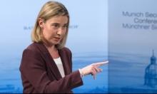 موغريني: الاستيطان يجعل حل الدولتين مستحيلًا