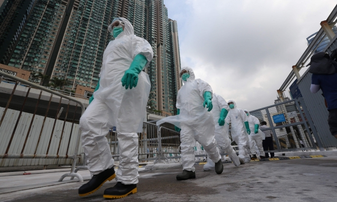30٪ من أسواق الدواجن الصينية مصابة بأنفلونزا الطيور