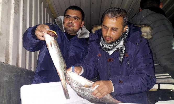 أسماك ومواد أخرى تدخل غزة من مصر