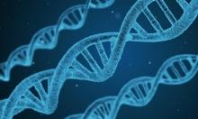 ضوء أخضر للتقدم في التعديل الجيني للخلايا البشرية