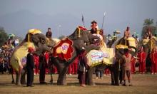 """انطلاق مهرجان """"الأفيال"""" في بلد المليون فيل..."""