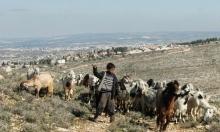 مصادرة مئات الدونمات للتوسع الاستيطاني قرب نابلس