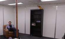 ديزني تبتكر غرفة للشحن اللاسلكي