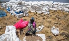 زامبيا: مصرع 8 أشخاص في تدافع لأجل معونات غذائية
