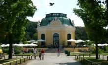 فيينا تغلق حديقة حيوانات بعد رصد أنفلونزا الطيور