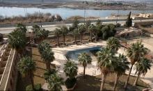 العراق: نصف الأراضي الزراعية غير مستغلة
