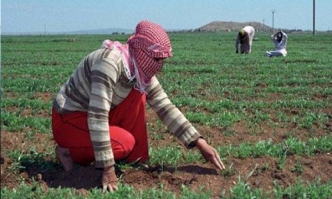 الاحتلال يرش مبيدات زراعية شرق قطاع غزة