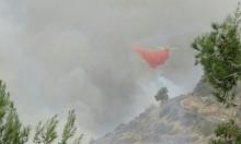 حريق هائل في أحراش قرب أم الفحم