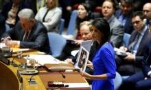 هيلي: أميركا قد تتحرك بمفردها بسورية بحال أخفق مجلس الأمن