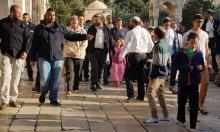 """أكثر من 1200 مستوطن يقتحمون الأقصى بـ""""الفصح"""""""