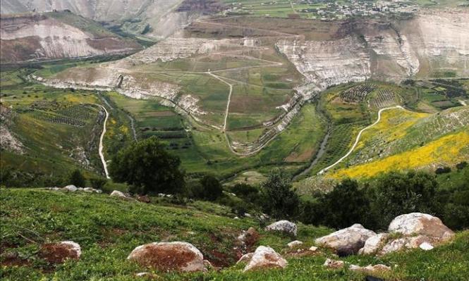 عقربا: قرية أردنية شاهدة على الجراح العربية النازفة