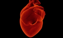 الهبات الساخنة المبكرة: مخاطر أكبر على القلب والأوردة