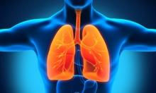 كيف تصل جسيمات الهواء الملوثة إلى الدم وتتلف القلب؟