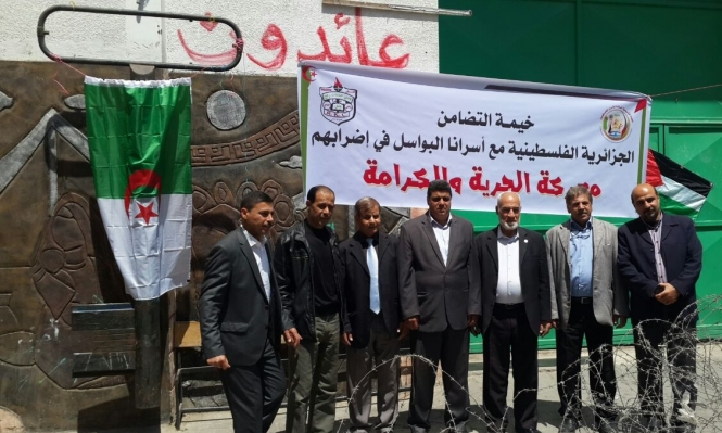 """""""حماية"""" يطالب تدويل ملف الأسرى ويحذر من التغذية القسرية"""