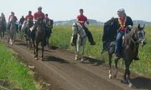 """أم الفحم: نادي الفروسية ينظم مسيرة """"خيول العودة"""" للقرى المهجرة"""