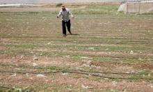 الأغوار: الاحتلال يمنع المياه عن بردلة الفلسطينية