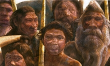 هكذا تعايش البشر القدماء مع أشباه البشر قبل 300 ألف سنة!