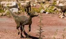 ديناصور عاش قبل 75 مليون عام يستلهم اسمه من فيلم هوليوودي