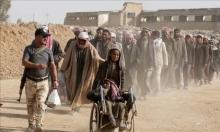 فرار 2000 عائلة من غربي الموصل خلال 9 أيام
