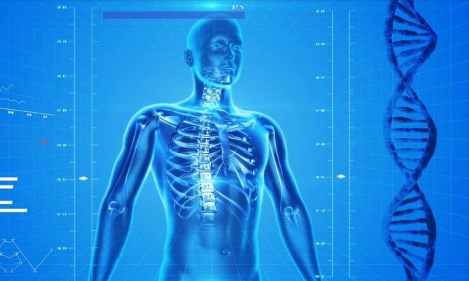 طرق الوقاية من الإصابة بهشاشة العظام