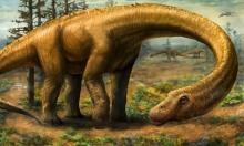"""حقائق جديدة يتوصل إليها علماء بشأن """"قوة الديناصورات"""""""