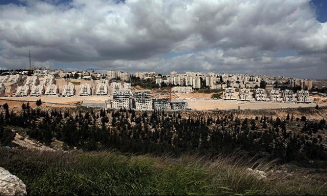 البرلمان الأوروبي يدعو لوقف الاستيطان الإسرائيلي