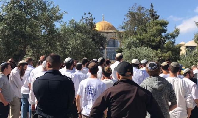 مئات اليهود يقتحمون الأقصى بذكرى احتلال القدس