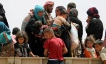 العراق: الأمم المتحدة تحذر من نزوح 200 ألف موصلي