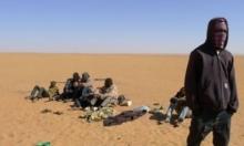 العطش يقتل 44 مهاجرًا في صحراء النيجر