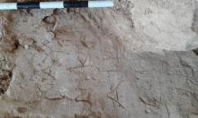 اكتشاف مقبرة أثرية تعود للعصر الهيلنستي في الإسكندرية